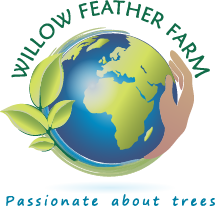 Willow Feather Farm